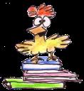 Book Chook