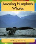 Amazing Humpback Whales