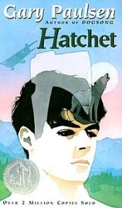 Hatchet (cover)