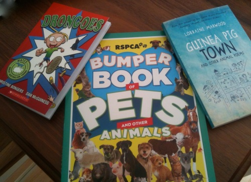 Book covers - Drongoes, Bumper Book of Pets and other Animals, Guinea Pig Town and other Animal Poems