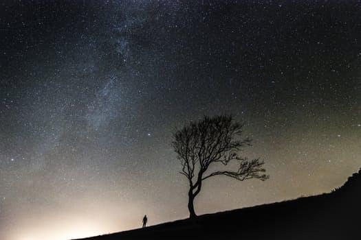 Stars. Photo from pexels.com