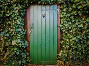 A green door hidden by ivy. Image courtesy pexels.com
