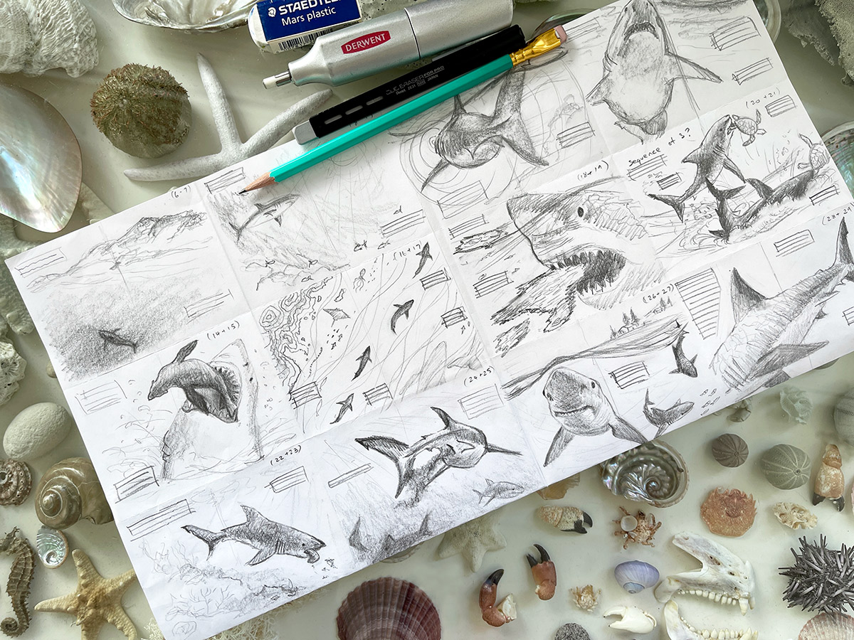 Thumbnail sketches by Cindy Lane for her picture book Great White Shark
